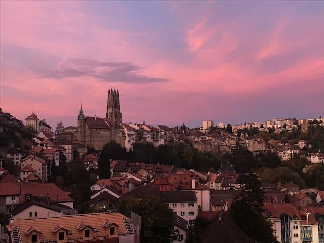 Magnifique logement  au cœur de Fribourg