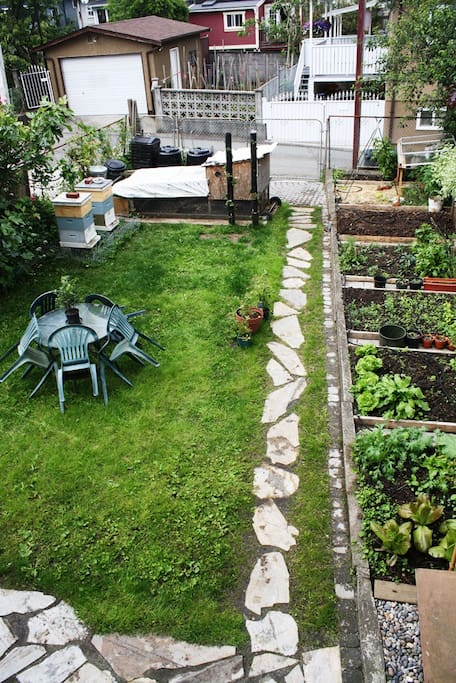 Back yard with chickens, honey bees, and vegetable garden.