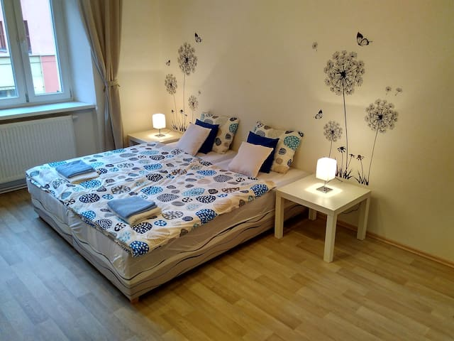 NEW cozy 2 bedroom apartment 15 mins from center