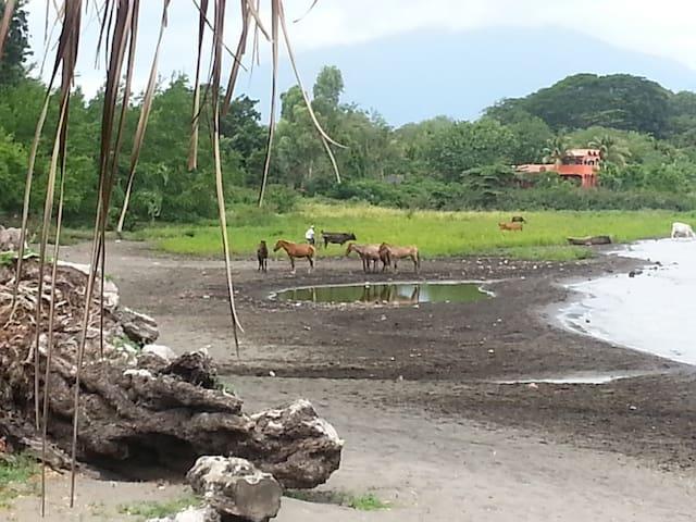 Volcanic Island Get-away - San José del Sur, Rivas - Øy
