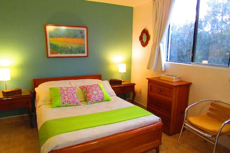 Room 4 in House of Light and Color, Coyoacan. - Bed & Breakfast