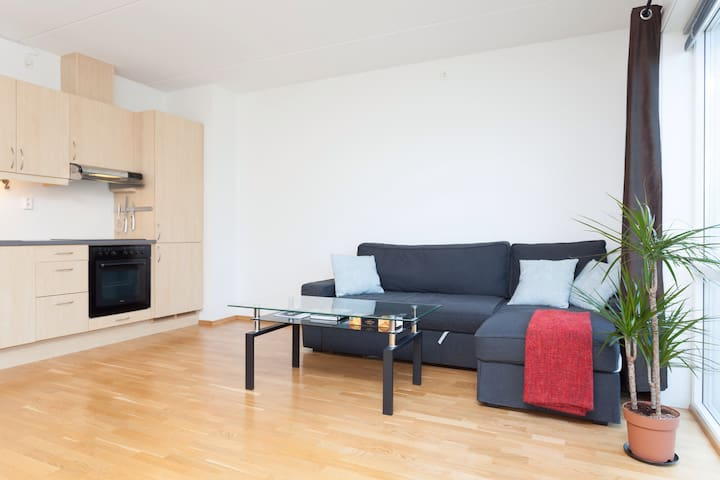 Access to all in nightlife city - Trondheim - Appartement
