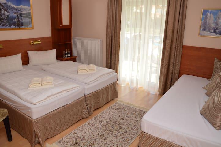 Gemütliche Zimmer in Bad Hofgastein - Bad Hofgastein - House