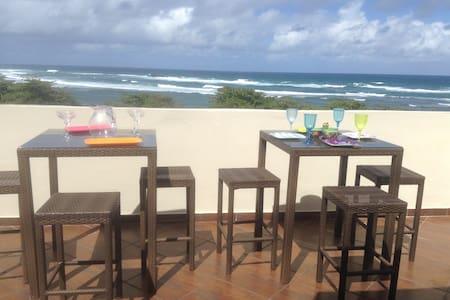 Oceanfront  Penthouse Apartment - Vega Baja