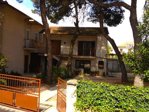 Apartmani Vesna Biograd 5/5 - room