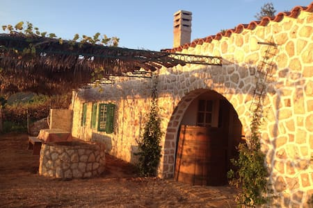 Entire Ecological Vineyard House - Rab - Huis