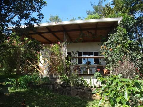 Cabin on a Coffee Plantation, Tierras Morenas