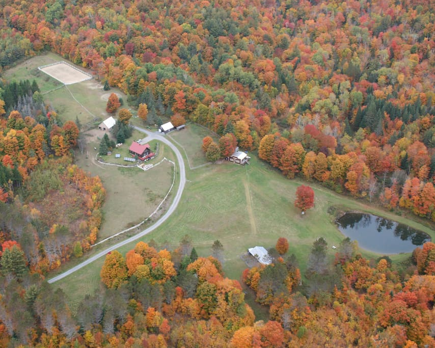 Property from above! Gorgeous fall colors