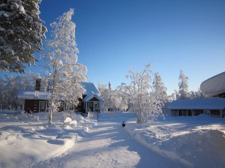 Base Camp with experiences of Lapland.
