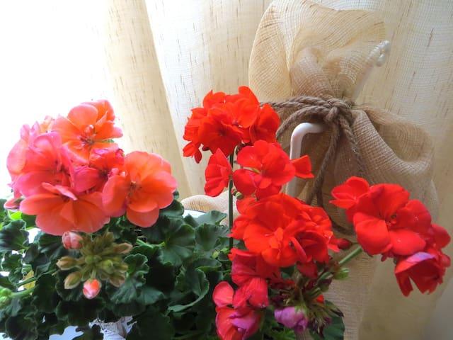 Casa Vacanza il Geranio - Camera Violetta - Calimera - Casa de férias