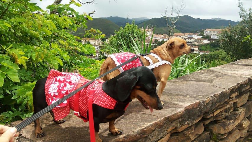 Ouro Preto Hospedagem p/até 3 pessoas e seu pet