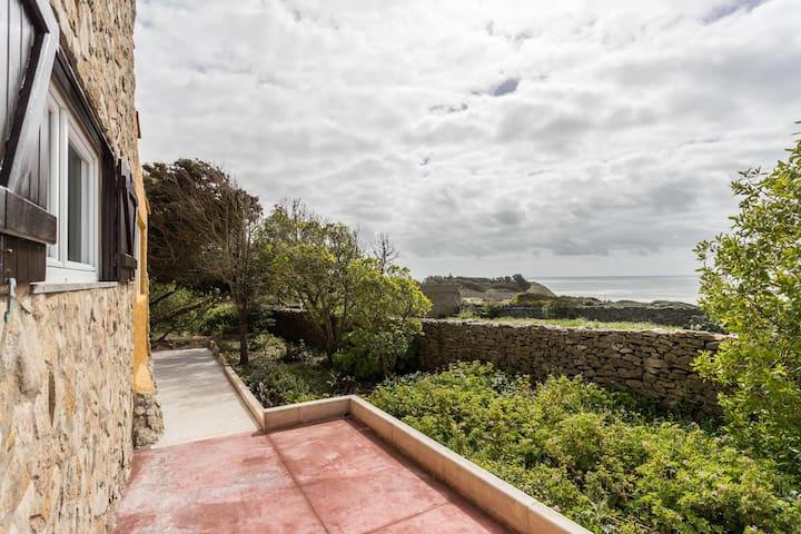 Garden House near Ericeira III