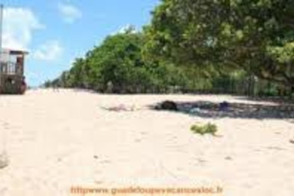 La plage des Alizés est à 30 secondes.