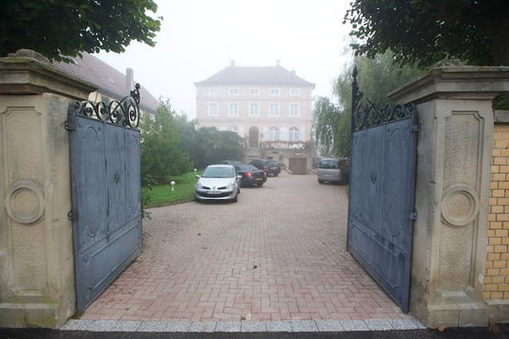 Au vieux manoir - Friesenheim - Haus