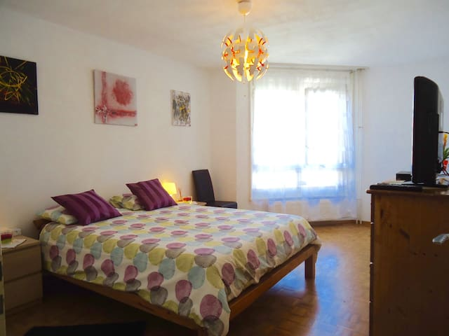 Large quiet private bedroom including breakfast - Ženeva - Byt