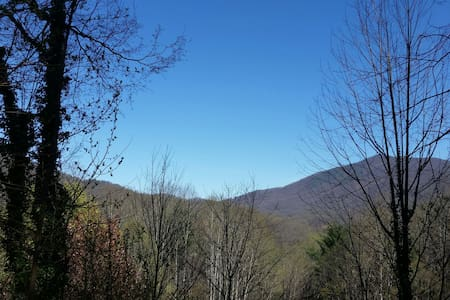 CHARMING BAYNOLIA CABIN WITH VIEWS! - Sylva