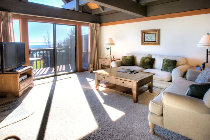 Tahoe Marina Lakefront #22