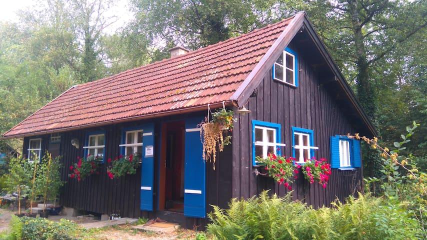 70m² Ferienhaus direkt am See mit eigenem Steg - Dießen am Ammersee - Vacation home