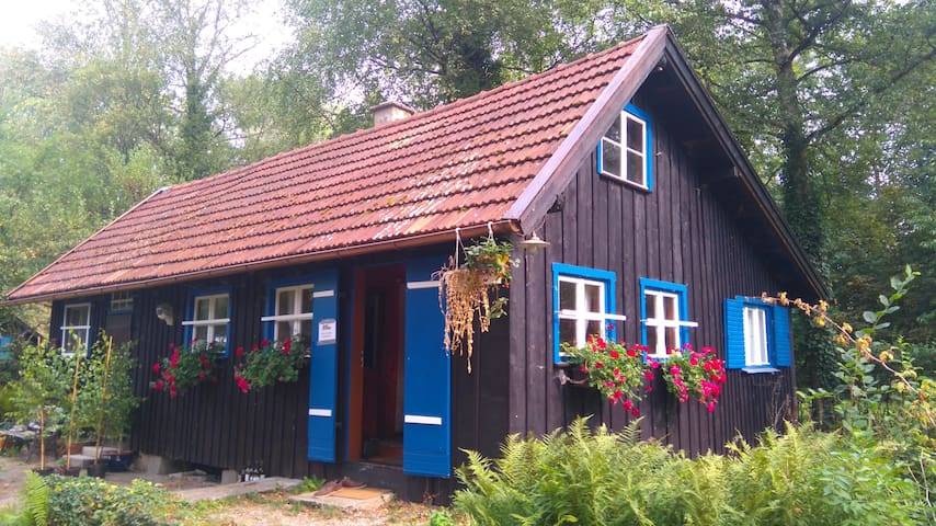 70m² Ferienhaus direkt am See mit eigenem Steg - Dießen am Ammersee - Casa de férias