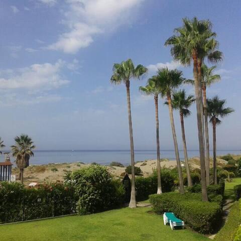 Estudio primera línea a 50 mtrs playa. Fibra 600Mb