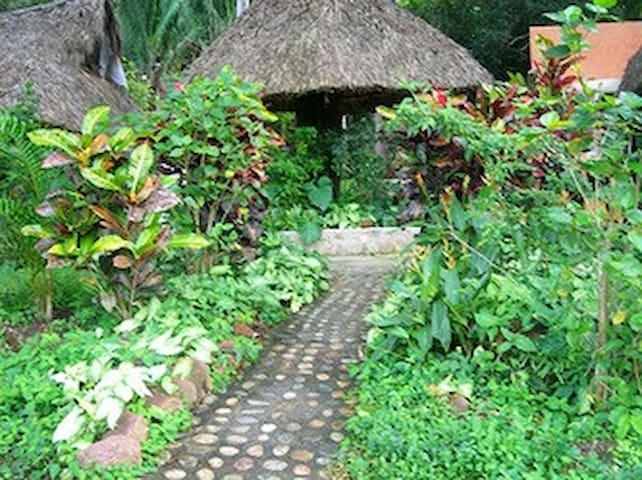 Cabins in the jungle, Monte Carmelo