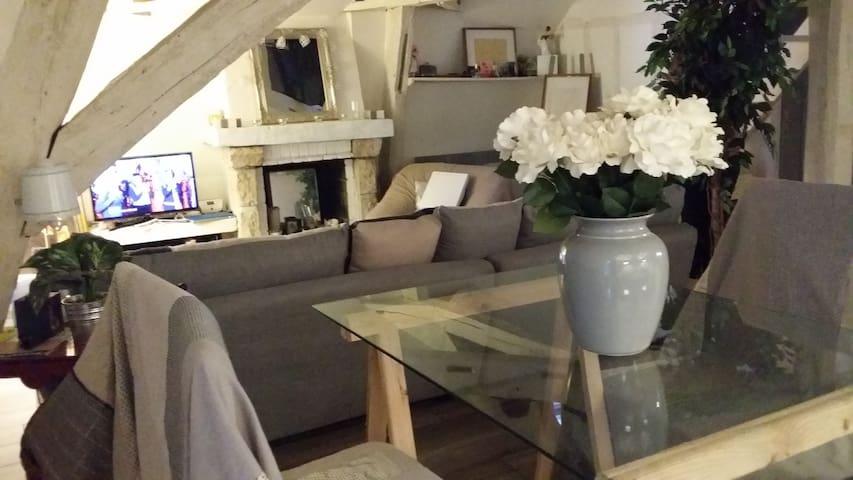 Beau studio dans la vieille ville - Auxerre - Apartament