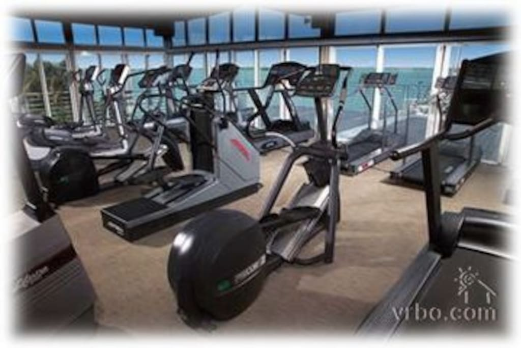 Cardio section of the large gym, overlooking the bay