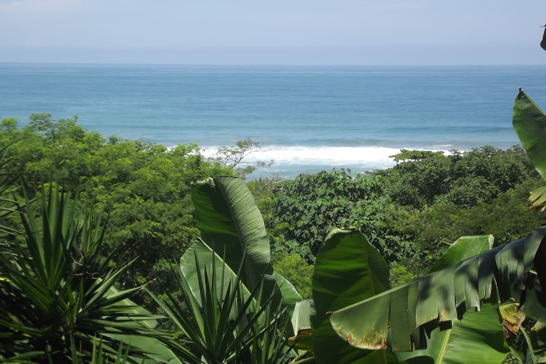 Surfsong Ocean view&proximity