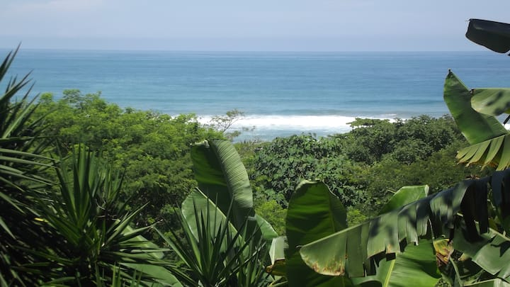 Private&comfort ocean view 200m walk to the beach