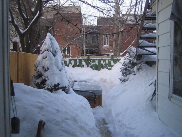 SPA l'hiver.  Baignade hivernale dans un décor féérique