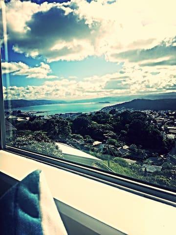 Breathtaking Views in a Cozy Flat! - Wellington - Apartemen