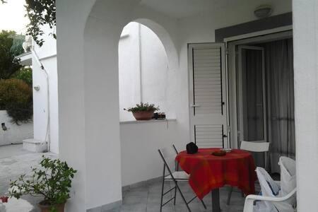 Serrara Fontana,B&B Il Roseto stanza per 2 persone - Serrara Fontana - Bed & Breakfast
