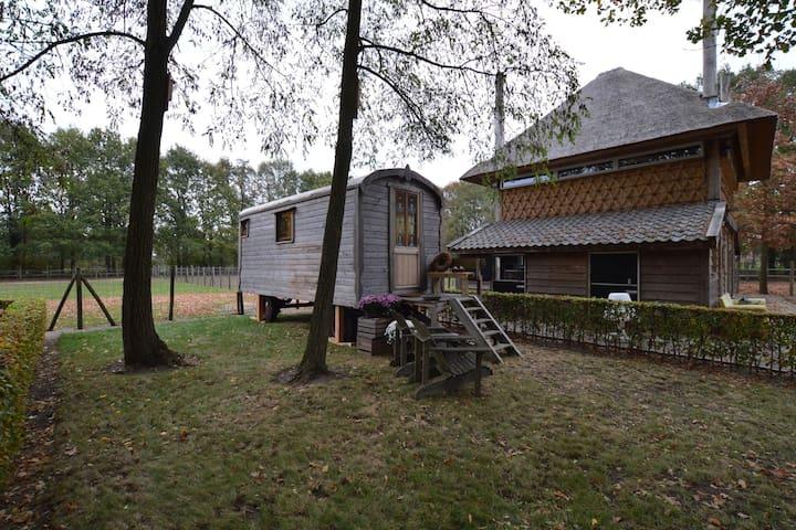 Invitante cottage con vasca idromassaggio in Zelanda