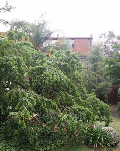 North Melbourne 'City Gardens' Apartment
