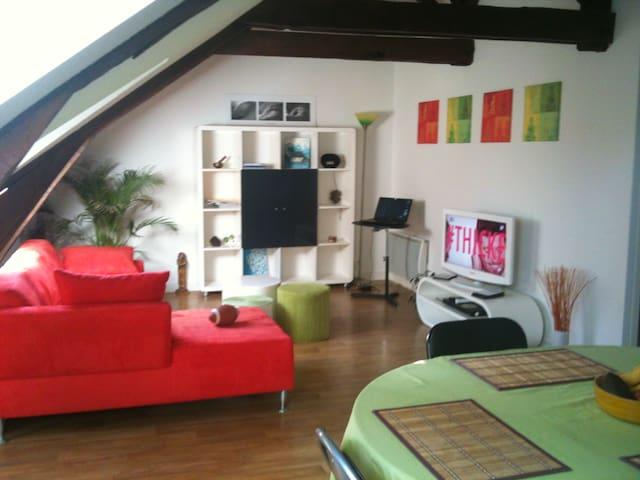 Appartement sympa et calme - Saint-Aubin-d'Aubigné - Daire