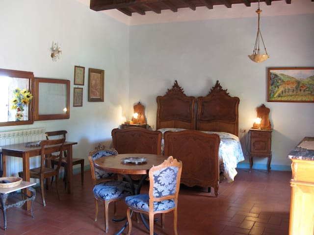 Apt. TURCHESE spacious and antique - Greve in Chianti - Appartement