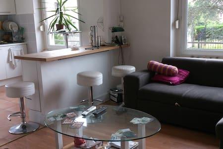 Location vacances appartement - Saint-Dié-des-Vosges