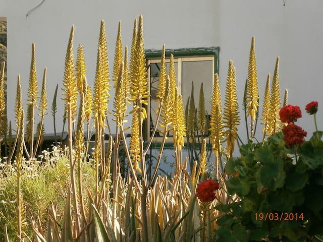 Casa mobile, einfach und nett - Valle Gran Rey - Talo