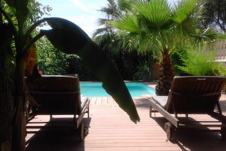 belle villa avec piscine privée en petite camargue
