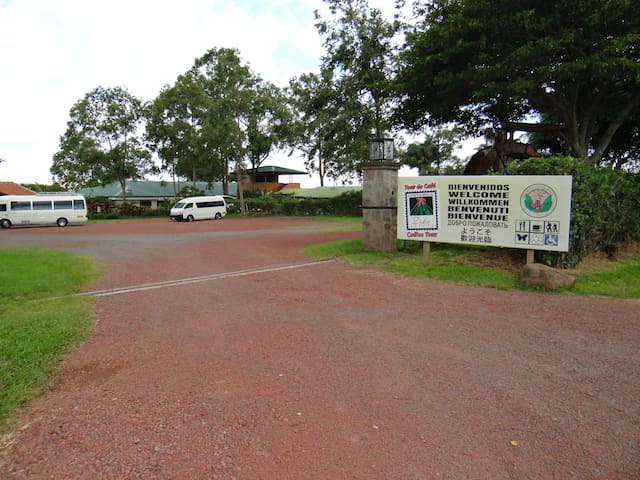Entrance of Doka Estate Coffee Tour, 25 min drive from the apartment
