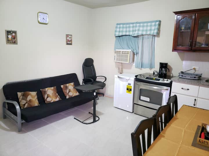 1 Bed, Bath furnished apartment close to Blue Mall