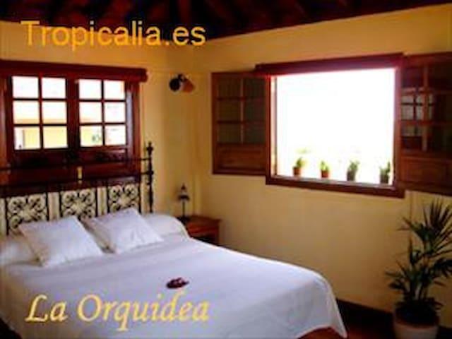 Apartamento en Casa Rural Güimar - Güimar - Apartment