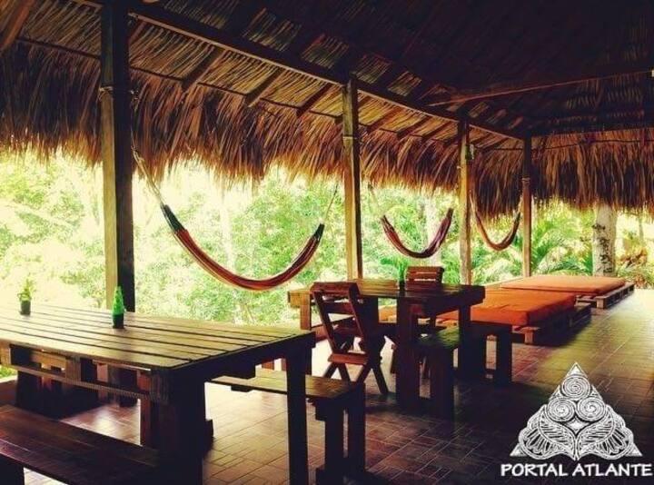 Stunning Jungle at Tayrona with Carribbean Coast