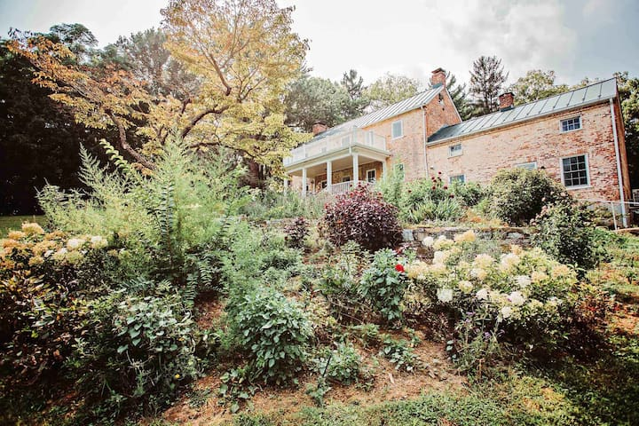 garden with stone terracing