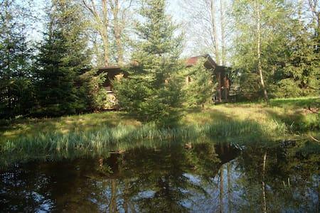 Stylish Villa, garden,pond,nature. - kielecki - Villa