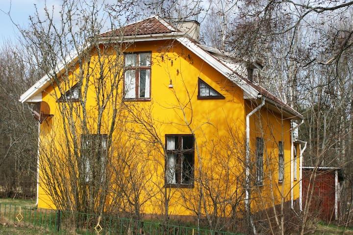 Ferienhaus Villa Solsken - Hultsfred S - Casa
