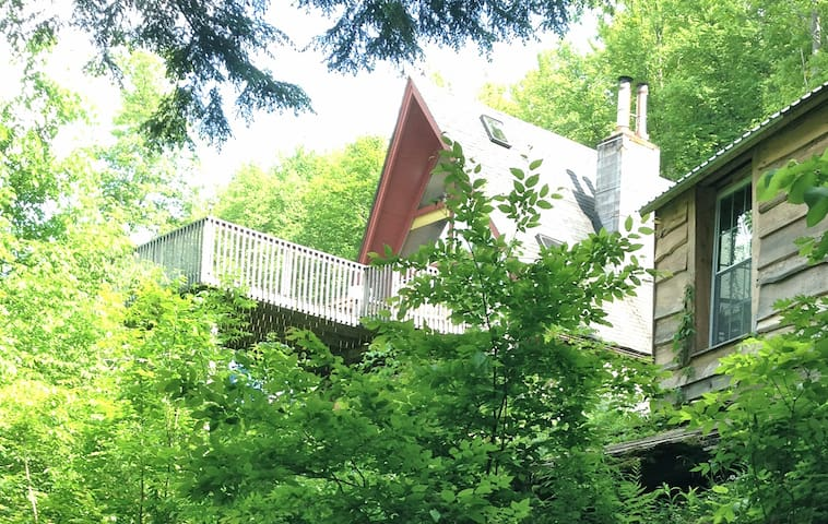 Private Cabin in the woods 30 acres,  A Retreat - Franklin - Chalet