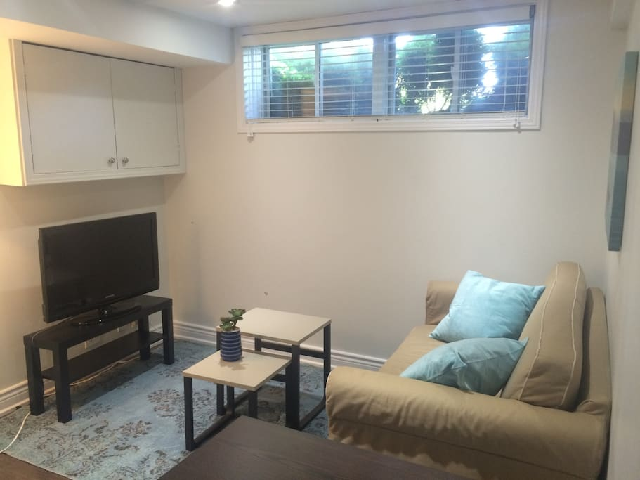 Living room with comfy pull out sofa