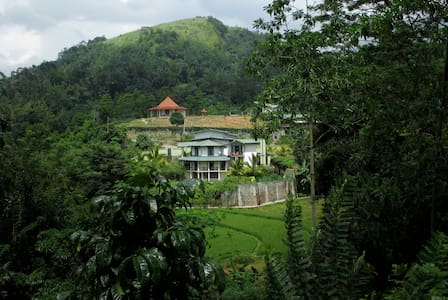 The Paddyfield Hideaway and Octagon - kANDY