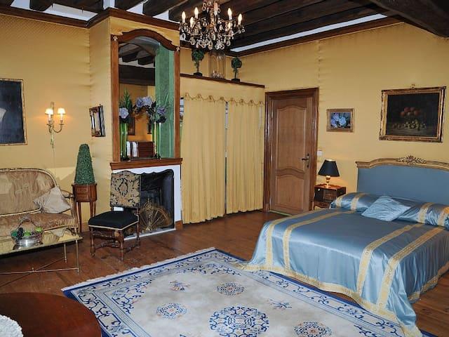Chambres Jaune et Salon Vert au chateau - Mignerette - Castle